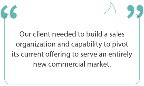 Building sales capability to pivot to a new market